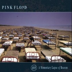 PINK FLOYD: A MOMENTARY  LAPSE OF REASON  CD