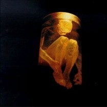 ALICE IN CHAINS: NOTHING SAFE CD