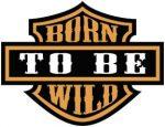 Born to be wild  kis felvarró  (hímzett)
