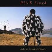 PINK FLOYD: DELICATE SOUND OF THUNDER (2CD)
